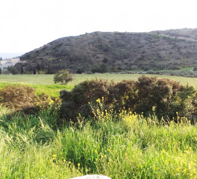 Sea View Residential Plot in Limassol, Cyprus, AE11875 image 3