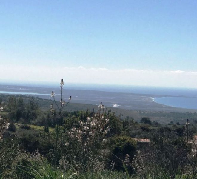 Large Residential Plot in Limassol, Cyprus, AE12171 image 1