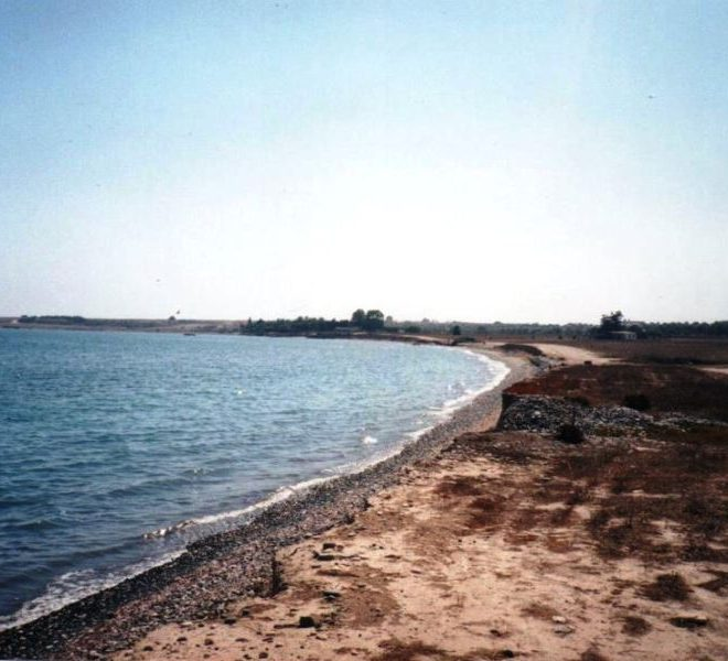 Large Residential Plot in Larnaca, Cyprus, PX11474 image 3