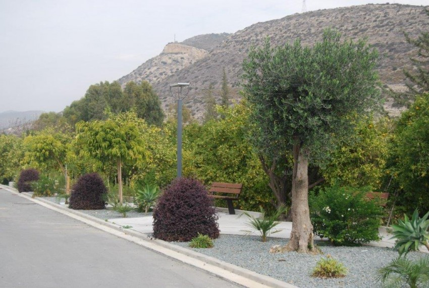 GREEN VALLEY HOUSE 10 (1)