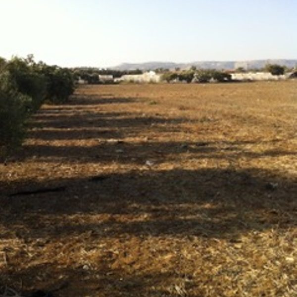 Large Sea Front Land in Maroni, Cyprus, AE12004 image 1