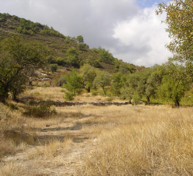 Large Residential Plot in Pera Pedi, Cyprus, CM12633 image 1