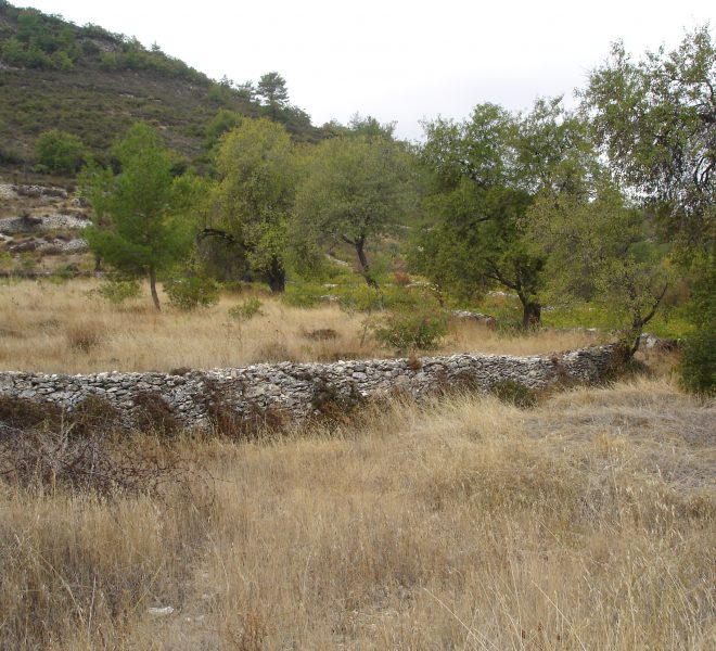 Large Residential Plot in Pera Pedi, Cyprus, CM12633 image 2