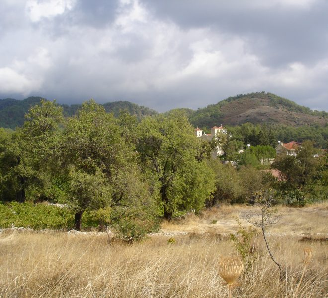 Large Residential Plot in Pera Pedi, Cyprus, CM12633 image 3