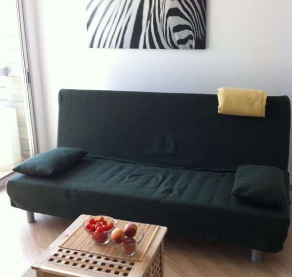 couch_living-room