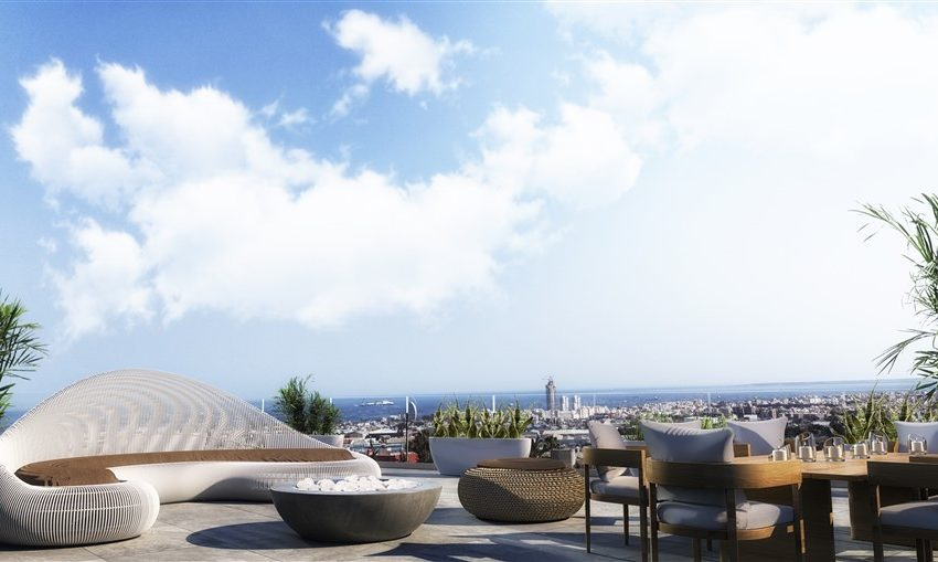 penthouse roof garden-day view
