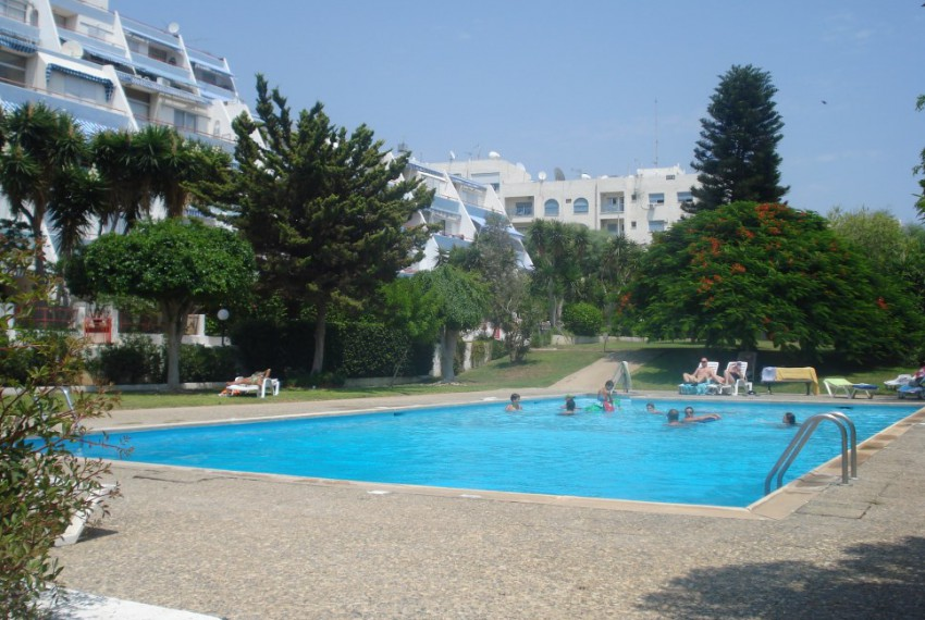 rSwimming pool and common garden (2)