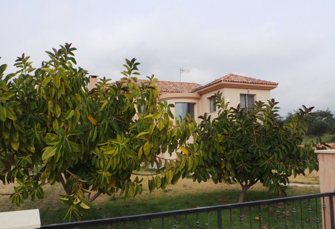 4 Bedroom House in Pyrgos for sale in Pyrgos SR6730 image 3